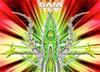Gaia Tek Compilação Traz Remix De Clássico Do Deep Purple